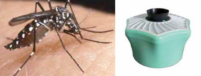 Piège moustiques environnement